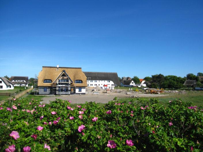 Ferienimmobilien auf Hiddensee Insel Rügen — Potsdam