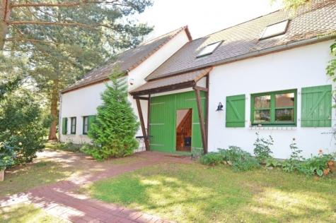 Luxuriöser Fläminghof mit ausgebauter Scheune in traumhafter Abseitslage!, 14793 Buckautal, Resthof