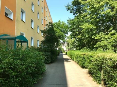 Bezugsfreie 4-Zimmerwohnung *mit Süd-Balkon und Blick ins Grüne*, 14480 Potsdam / Am Stern, Etagenwohnung